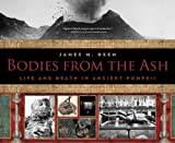 img - for Bodies from the Ash: Life and Death in Ancient Pompeii book / textbook / text book