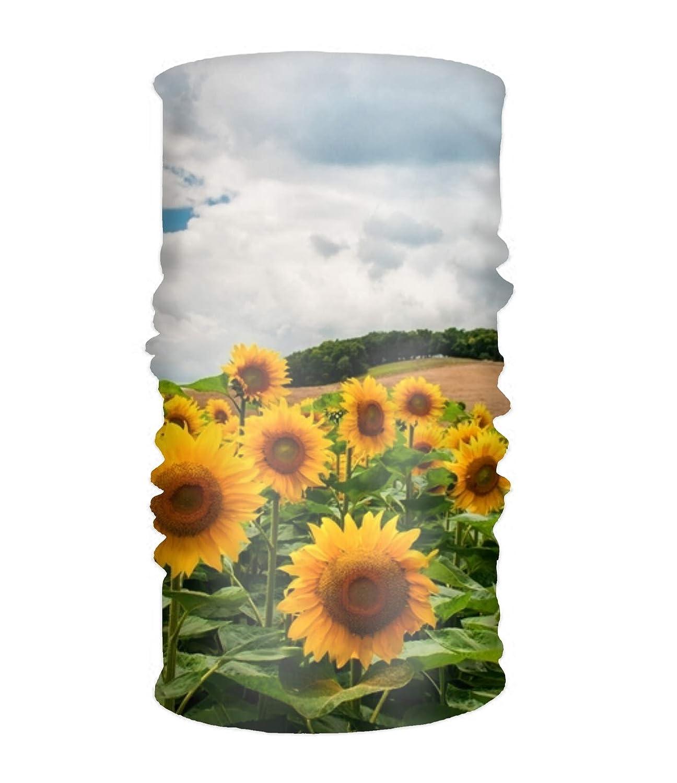 Amazon.com: Pañuelo unisex con diseño de nubes en el campo y ...