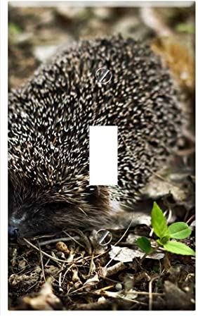 Hedgehog Baby Cute Animal Happy Little Nature Single-Gang Blank Wall Plate Cover