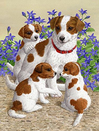 Caroline's Treasures ASA2167GF Jack Russell Terriers Garden Size Flag, Small, Multicolor