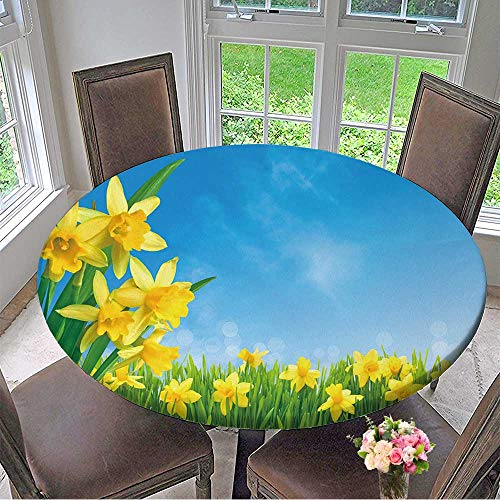 (Mikihome The Round Table Cloth Spring Narcissus Flowers in Green Grass Against Sunny Blue Sky for Birthday Party, Graduation Party 67
