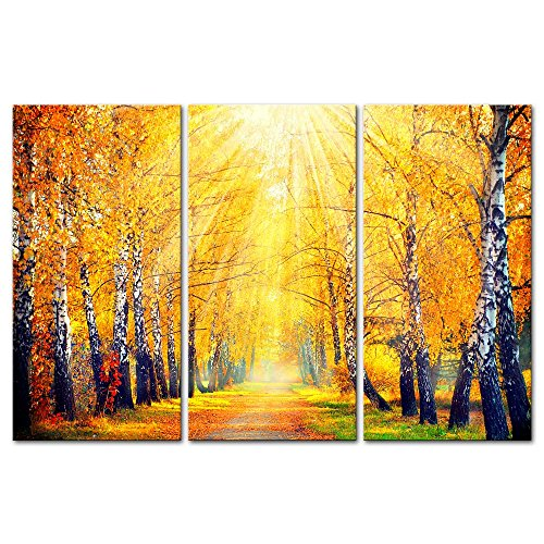 River Birch Leaves (3 Pieces Modern Canvas Painting Wall Art The Picture For Home Decoration Beautiful Autumn Fall Scene Autumnal Park Birch Trees And Leaves In Sun Rays Landscape Forest Print On Canvas Giclee Artwork For Wall Decor)