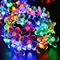 Fullbell Flower String Lights, Sakura Lights, Indoor/Outdoor Decorative String Lights, Fairy Twinkle Wire Lights with 8 Flash Changing Modes for Christmas/Patio/Garden/Party (33ft 100LED Multi-Color)