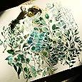Doraking DIY Decoration Transparent Sulfuric Paper Green Plants Stickers for Scrapbook