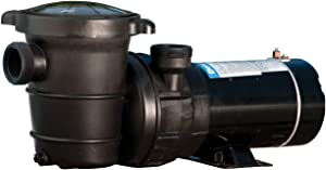 Doheny's Above Ground Pool Pro Swimming Pool Pumps (1 HP)