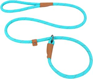 Pet's Company Slip Rope Dog Leash, Reflective Mountain Climbing Leash - 5ft, 2 Sizes, 4 Colors (Medium, Turquoise)