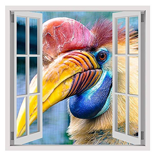 Alonline Art - Hornbill Bird by Fake 3D Window | framed stretched canvas on a ready to hang frame - 100% cotton - gallery wrapped | 20