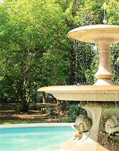 Home Comforts LAMINATED POSTER Water Water Fountain Decorative Trees Nature Park Poster 24x16 Adhesive Decal by Home Comforts