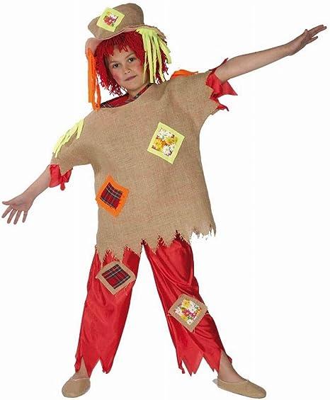 Disfraz infantil de espantapájaros (3-5 años): Amazon.es ...
