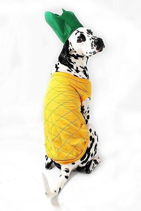 Midlee Disfraz de Perro de piña: Amazon.es: Productos para mascotas