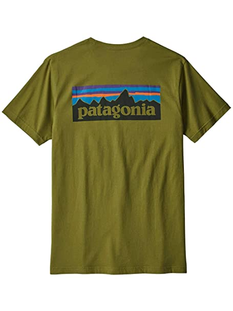 895f3fcdfd1 Patagonia P6 Logo Slim Fit Tee Willow Herb Green  Amazon.co.uk  Clothing