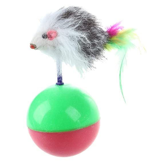 Amazon.com : Best Quality Funny Kids Cute pet cat Kitten Training Play Toy mice Mouse Tumbler Ball : Pet Supplies