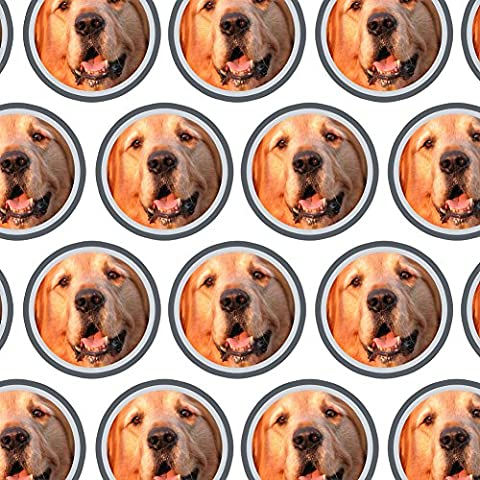 Premium Gift Wrap Wrapping Paper Roll Dog Puppy - Golden Retriever - Golden Retriever Wrapping Paper