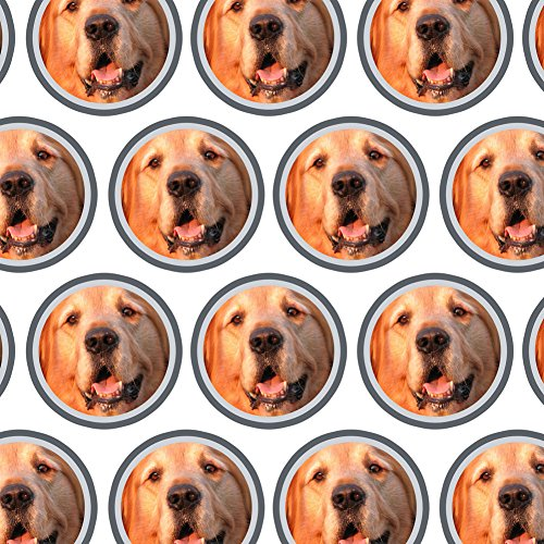 Premium Gift Wrap Wrapping Paper Roll Dog Puppy - Golden (Golden Wrap)