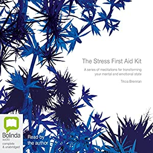 The Stress First Aid Kit | Livre audio