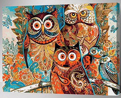 MailingArt Paint By Numbers Kits For Adults Kids With Wooden Frame - Colorful Owls