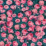 Cricut Patterned Transfer Sheets, Cabbage Rose