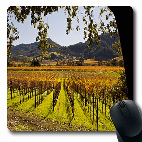 Ahawoso Mousepads Valley Vineyard Napa Autumn Food Drink Nature Green California Sonoma Fall Grapes Design France Oblong Shape 7.9 x 9.5 Inches Non-Slip Gaming Mouse Pad Rubber Oblong Mat ()