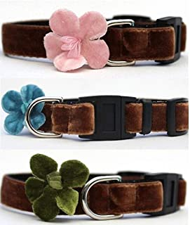product image for Diva-Dog ~ Surf Cat 'Camellia' Velvet Break-Away Cat Collar