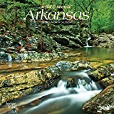 Arkansas Wild & Scenic 2020 7 x 7 Inch Monthly Mini Wall Calendar, USA United States of America Southeast State Nature