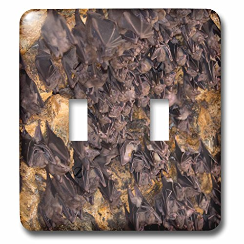Danita Delimont - bats - Indonesia, Bali. Pura Goa Lawah Temple of the Bat Caves - Light Switch Covers - double toggle switch (lsp_225784_2) by 3dRose