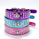 Pet's House Dog Collars for Small Dog Girls Bling
