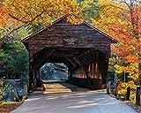 1000 piece jigsaw puzzles on sale - White Mountain Puzzles Albany Covered Bridge - 1000 Piece Jigsaw Puzzle
