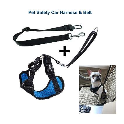 Perros Arneses de Seguridad Ajustable Arneses tipo chaleco con ...