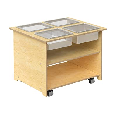 Whitney Brothers Wooden Mobile Sensory Table with Trays and Lids, Interactive Learning Table for Children: Industrial & Scientific