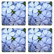 Luxlady Natural Rubber Square Coasters IMAGE ID: 18311525 blue jasmine flowers natural background