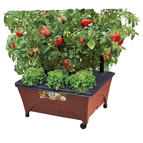Earth Brown Resin Raised Garden Bed Grow Box Kit with Self Watering System and Casters Patio and Deck Gardening (Wheels Raised Garden On)