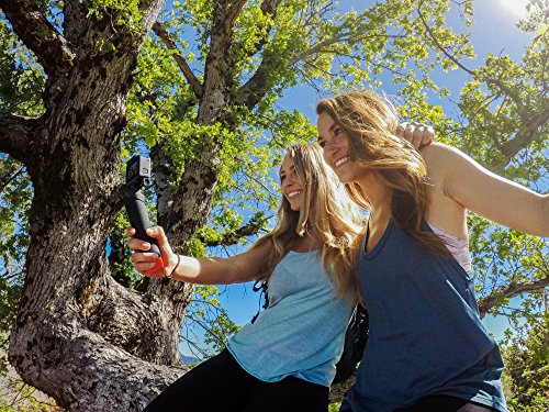 GoPro The Handler (Floating Hand Grip) (GoPro Official Mount)