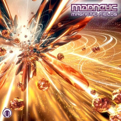 Madnetic - Magnetic Fields (2008) [FLAC] Download
