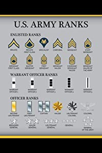 United States Army Rank Chart Reference Enlisted Officer NCO Guide American Military Uniform Support Troops Soldier Veterans Man Cave Laminated Dry Erase Wall Poster 12x18