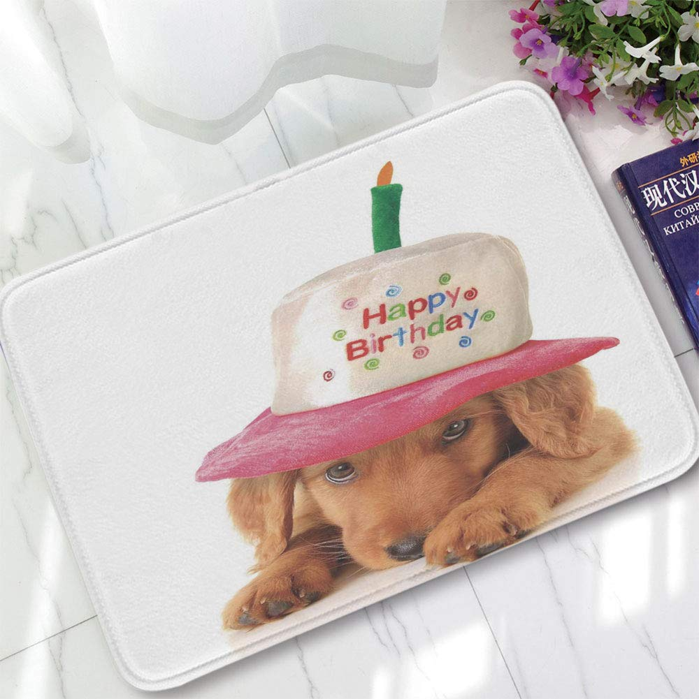 YOLIYANA Bath Mat,Birthday Decorations for Kids,for Dining Room Bathroom Office,15.75''x23.62'',Golden Puppy with Party Cone Shaped