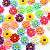 QianCraftKits Resin Flower, 135pcs Layered Daisy Flowers Flatback Resin Cabochon for DIY Phone/Scrapbooking/Craft Embellishments (19mm, 9colors)