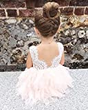 2Bunnies Girl Baby Girl Embroidered Beaded Victorian Lace Tiered Tutu Princess Pageant Party Dress