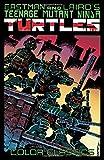 ninja turtle classic movie - Teenage Mutant Ninja Turtles Color Classics, Vol. 1