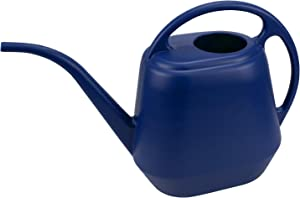 Fasmov Plastic Watering Can, 1-Gallon, Blue