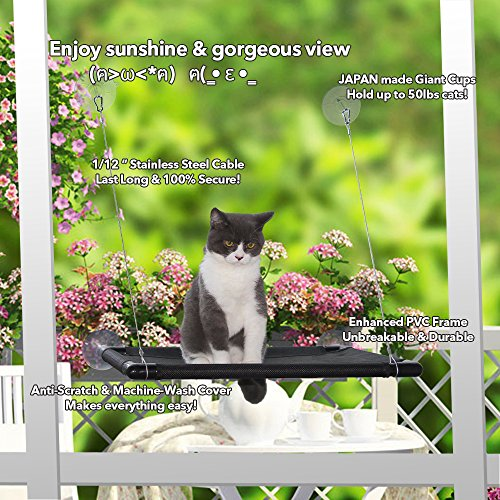 cat window perch  u2013 sturdy cat window hammock w  strong suction cup  u0026 stainless cable hold up to 50lbs window mounted cat bed  u0026 cat sunny seat  u2013 provides     cat window perch  u2013 sturdy cat window hammock w  strong suction cup      rh   houzeofthetomcat
