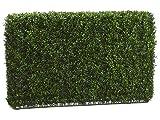 24''Hx7''Wx36''L Boxwood Hedge Two Tone Green