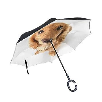 coosun dibujo perro pastor alemán doble capa paraguas invertido Reverse paraguas para coche y uso al