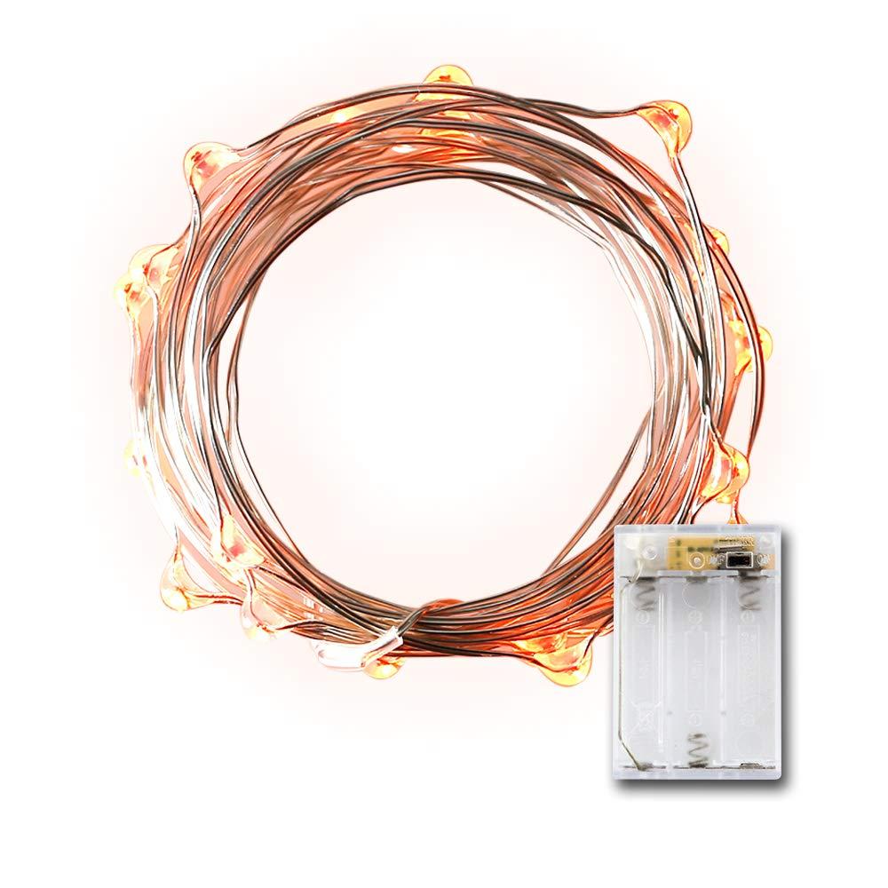 Amazon.com: LIDORE Micro LED 20 Orange String Lights with Timer ...