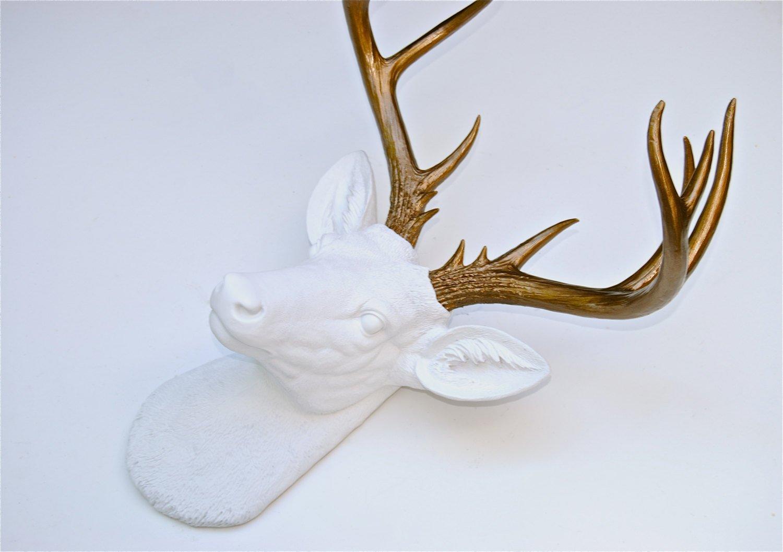 Porcelain Deer Head The Best Deer