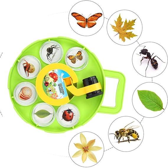 Bug Insetto Viewer Lente dIngrandimento Lente di Vetro Giocattoli educativi Insetto Cattura osservatore Osservatore per Bambini attivit/à allaperto Esplorazione della Natura