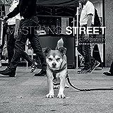 Mastering Street Photography