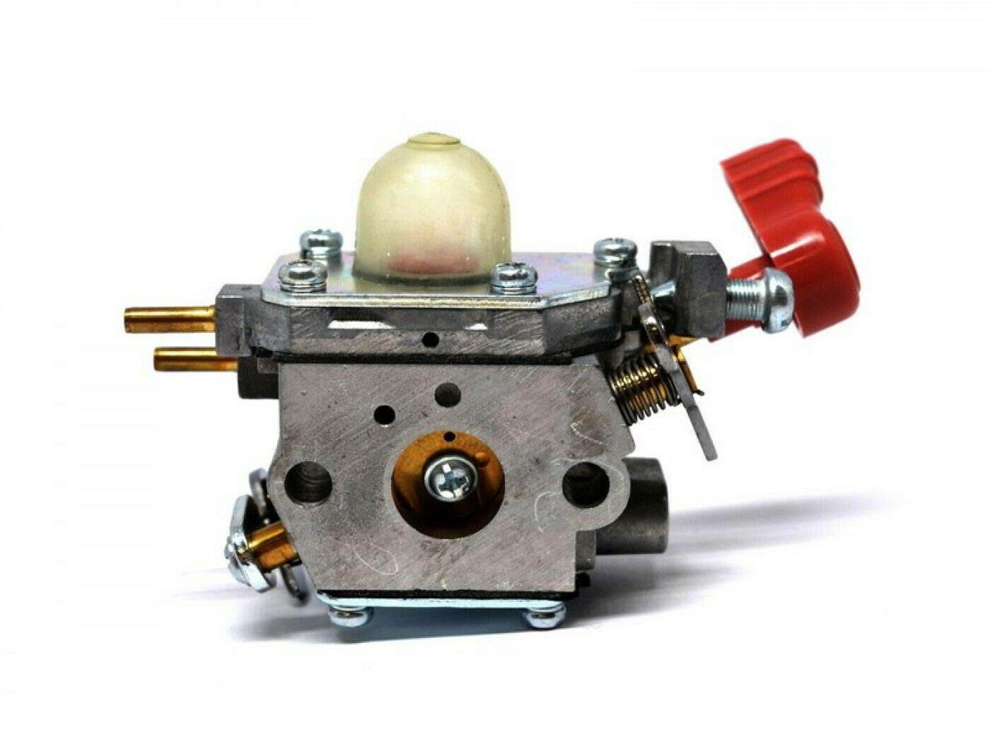 HS PARTS Carburador para desbrozadora Troy Bilt TB2040XP ...