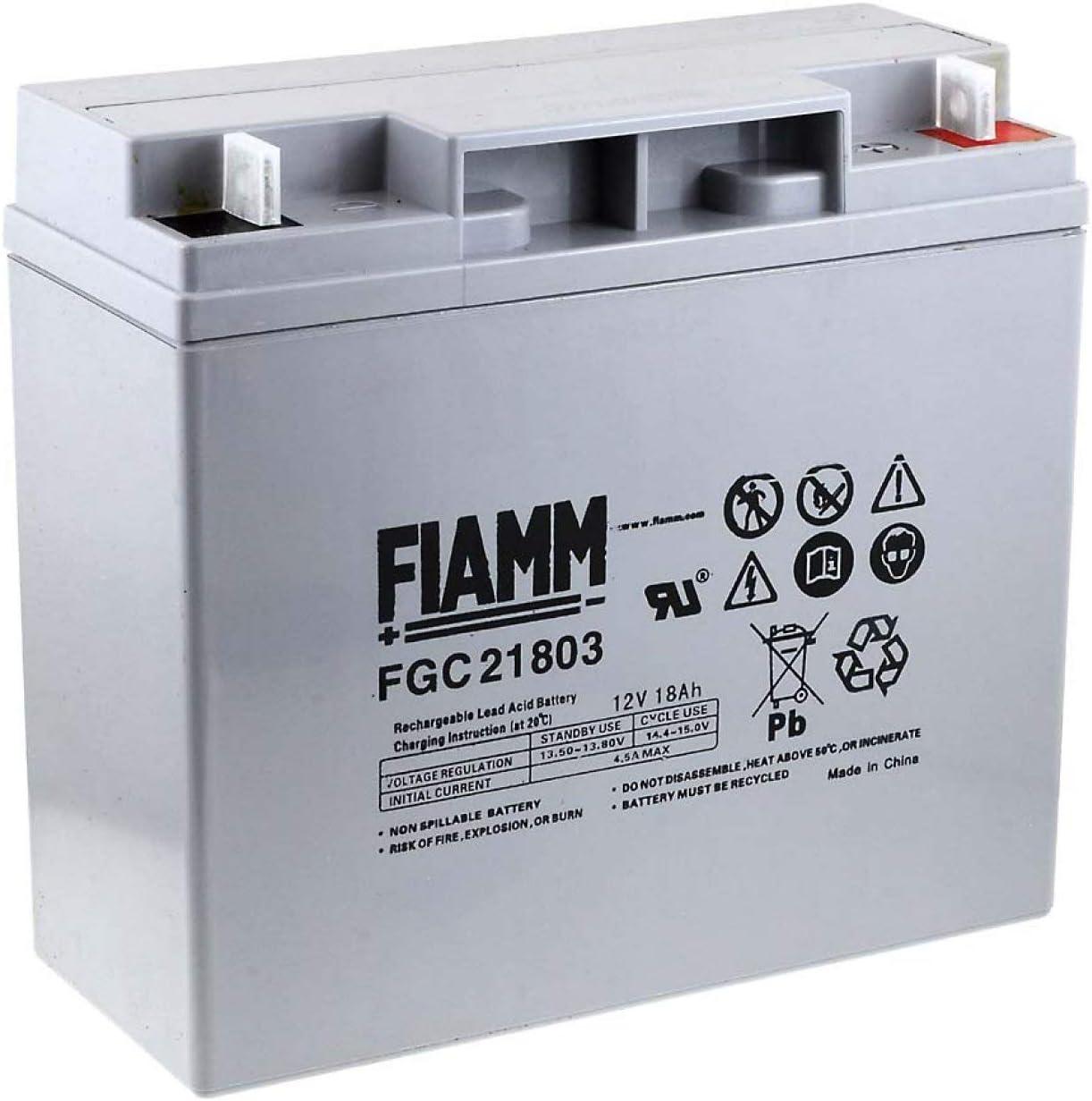 FIAMM Recambio de Batería para Carro de Golf Sillas de Ruedas Autocaravanas Scooter eléctrico 12V 18Ah (Ciclo Profundo)