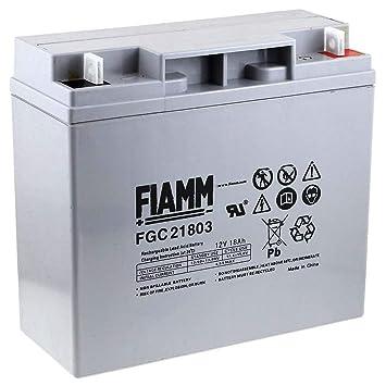 FIAMM Recambio de Batería para Carro de Golf Sillas de ruedas Autocaravanas Scooter eléctrico 12V 18Ah (ciclo profundo): Amazon.es: Electrónica