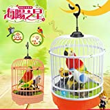 Yeefant Magical Voice Activate Chirping Sound Control Parrot Beautiful Singing Induction Bird Funny Toy Educational Learning Toy for Girl Boy Playing Home Game